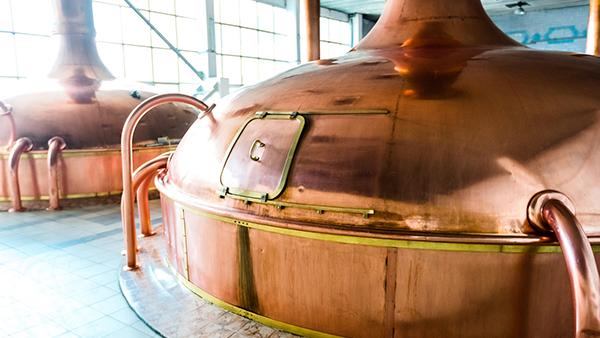 accueil-distillerie